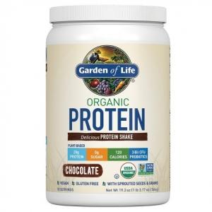 Ett vegan Protein